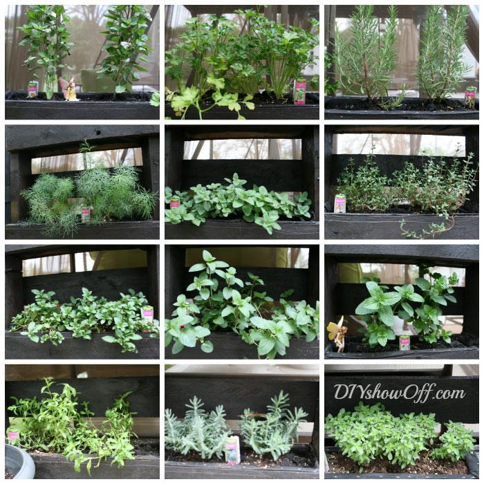 awesome free standing diy pallet herb garden off grid world. Black Bedroom Furniture Sets. Home Design Ideas