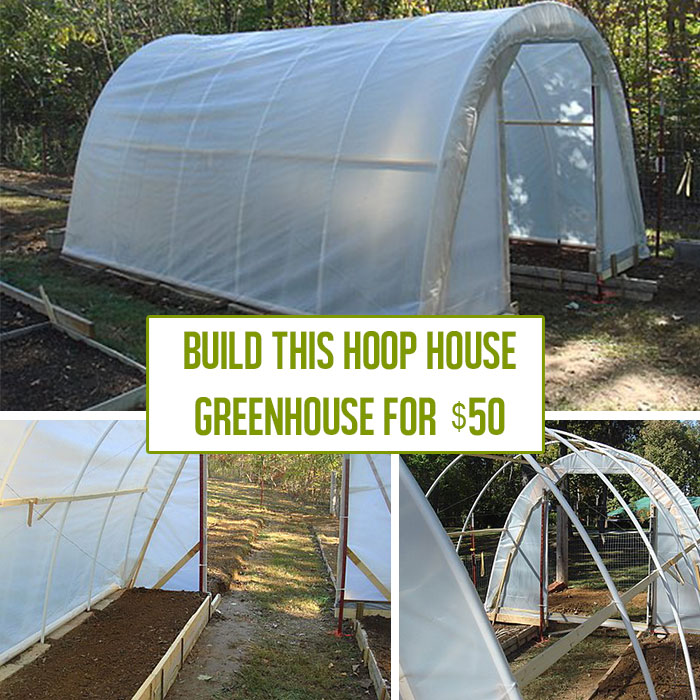 How to build a hoop house greenhouse for 50 off grid world for Build your house