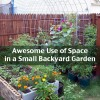 Awesome Use of Space in a Small Backyard Garden