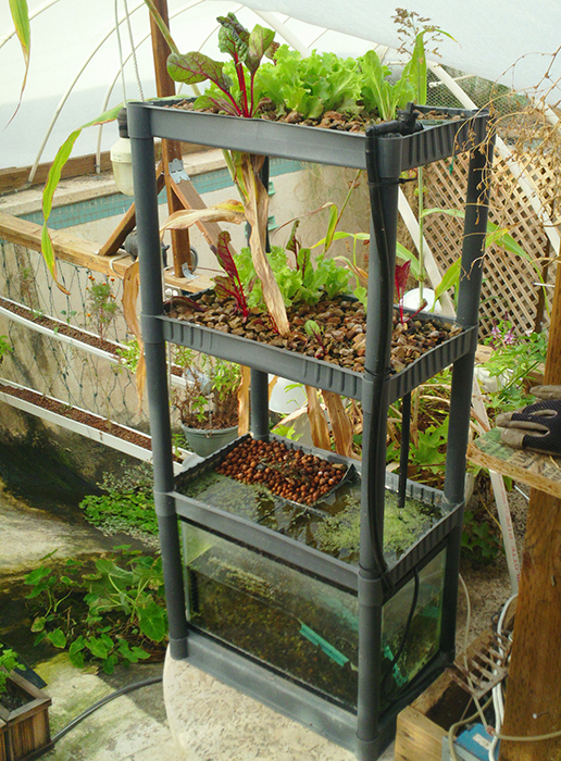 Brilliant Diy Vertical Aquaponic System