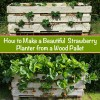 How to Make a Beautiful Strawberry Planter from a Wood Pallet