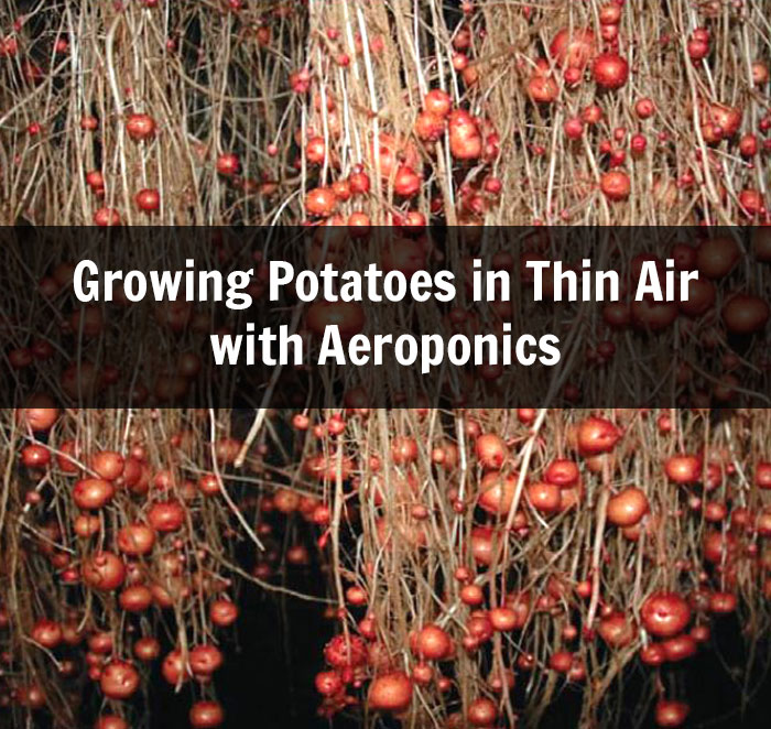 Aeroponics Archives Off Grid World