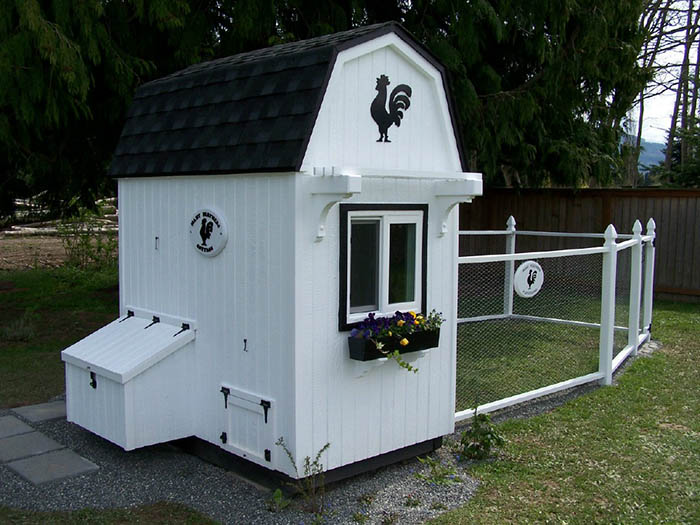 20 Adorable Chicken Coops