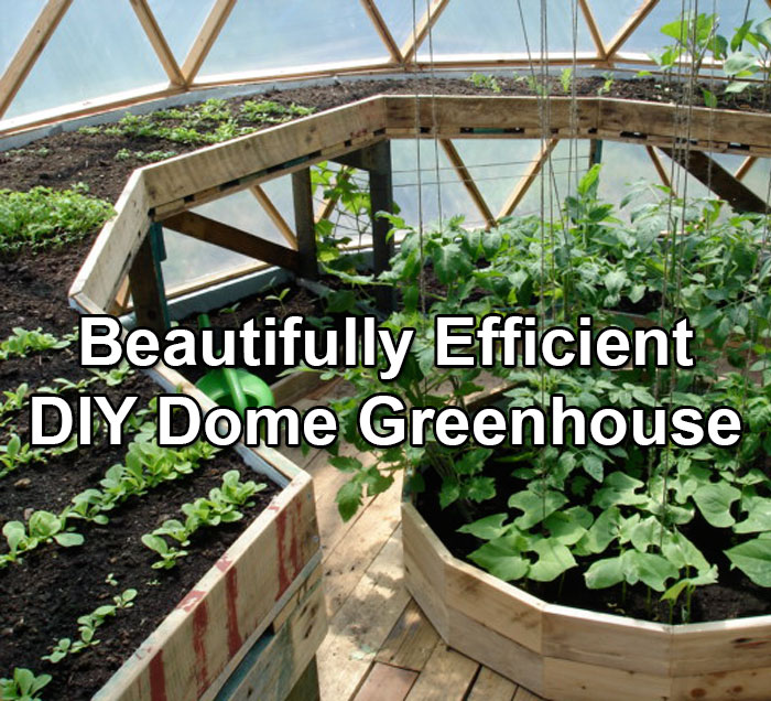 A Beautifully Efficient Diy Dome Greenhouse on 2 Story Octagon House Plans