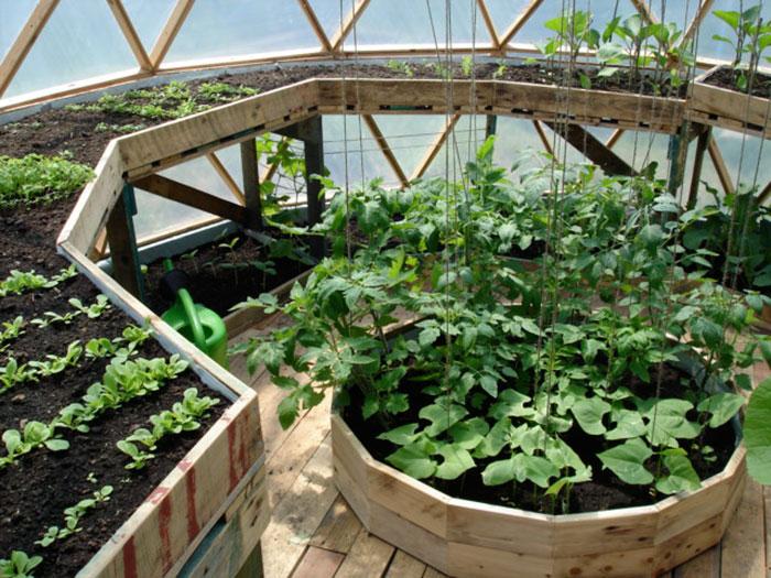Geodesic greenhouse