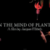 Mind of Plants : Documentary on The Intelligence of Plants