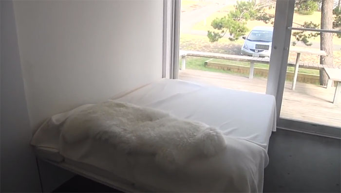 Shipping container home bedroom