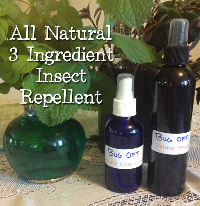 All Natural 3 Ingredient Insect Repellent That Works!