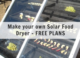 solar-dryer-feat