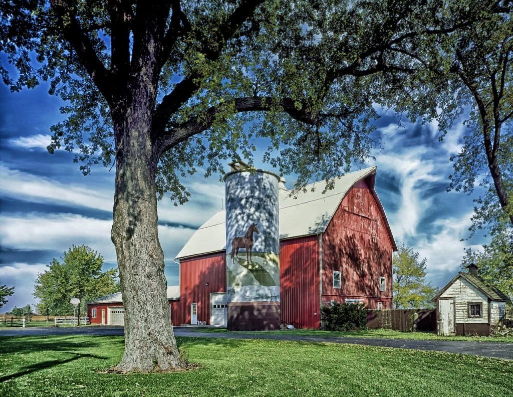farm-398717_1280