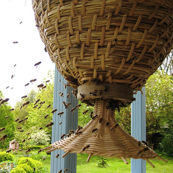 The sun hive a majestically beautiful bee hive that could for Modern hive