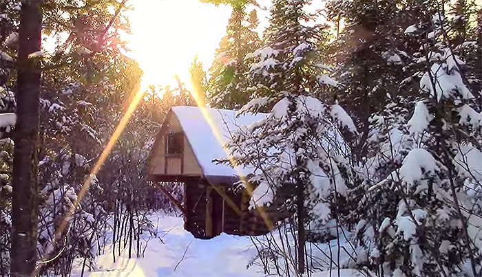 off-grid-cabin-in-the-woods5