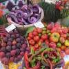Organic Farmer Grosses $100,000 Per Acre on 8 Acre Farm