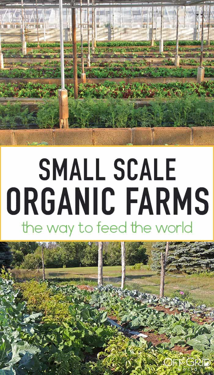Small organic farms