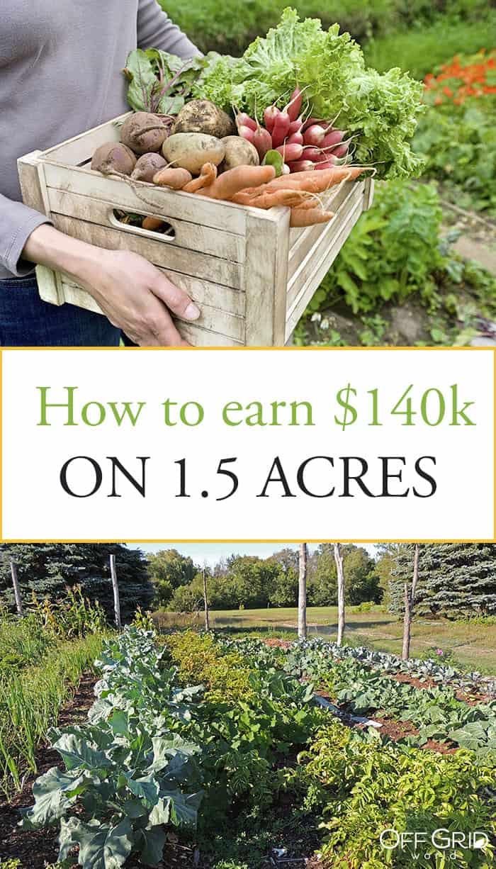 Small farm income
