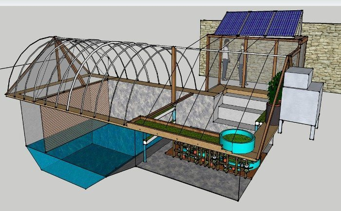 Ultimate underground greenhouse built from converted pool for Chicken in swimming pool