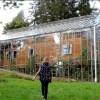 Couple Builds Greenhouse Around Home to Grow Food and Keep Warm