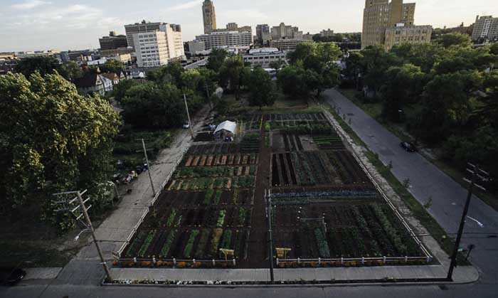 Urban Farming In Detroit Brings Hope and Better Health.