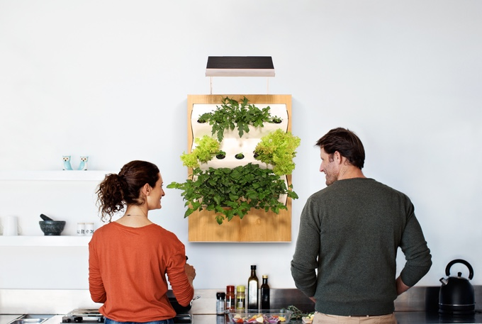 Meet Herbert, The Vertical Hydroponic Smart Garden That Fits On Your Kitchen Wall