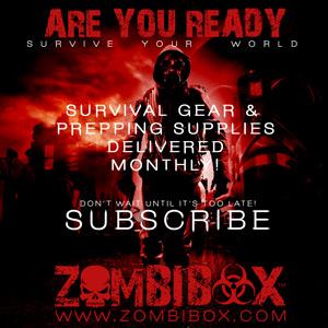 ZombiBox