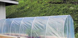 hoop house raised garden