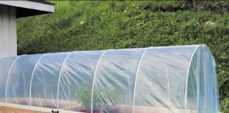 hoop house raised garden