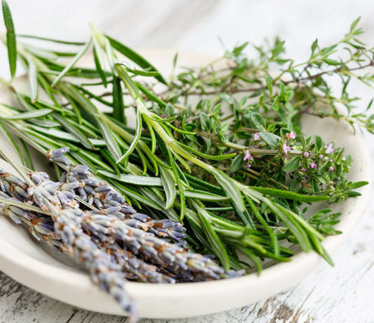 ways to preserve herbs