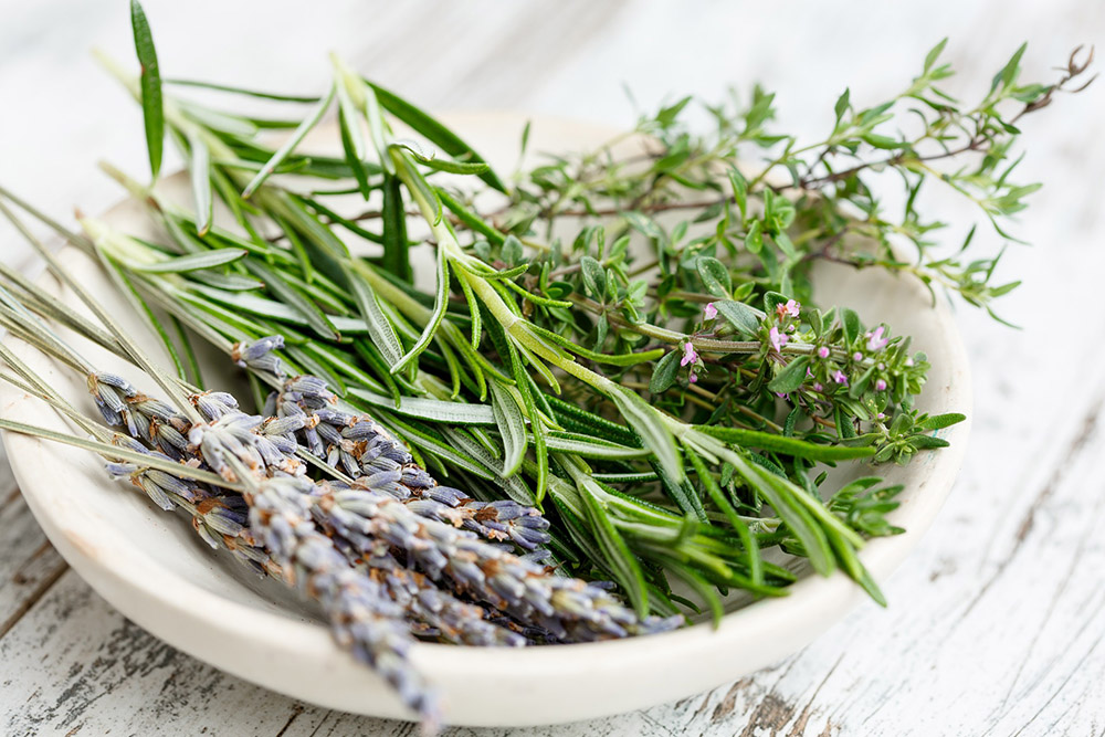 7 Easy Ways To Preserve Herbs From Your Garden