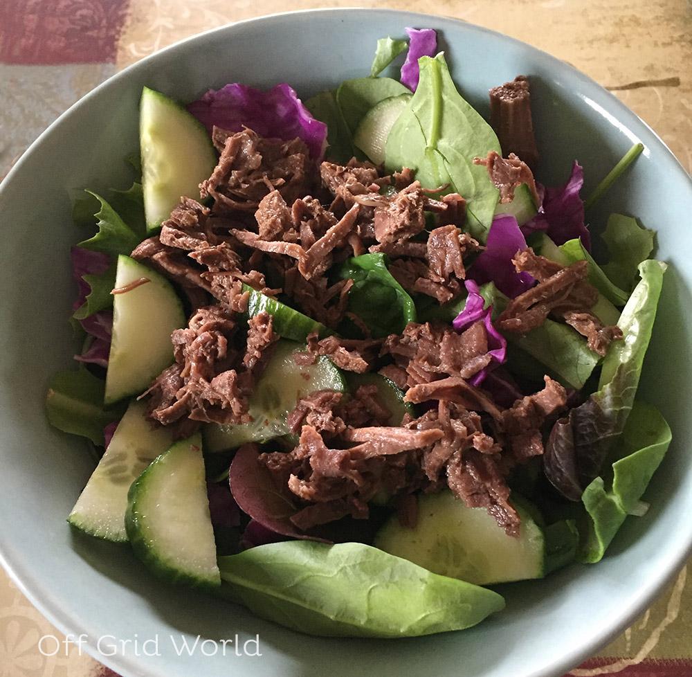 Instant pot venison on a salad