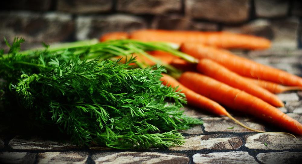 Foods to grow in a survival garden
