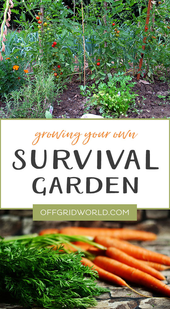 Growing a survival garden