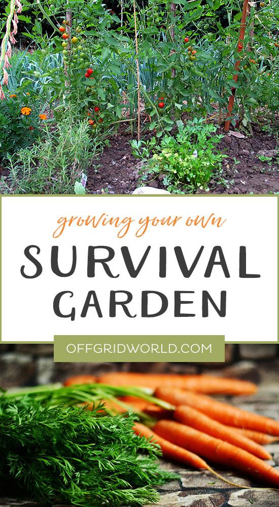 Growing a survival garden