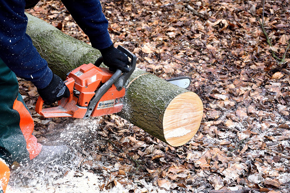 Top 5 Most Neglected (But Essential) Power Tools for Off Grid Living