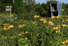 roadside honey stand