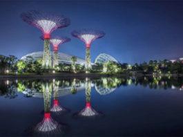 solar supertrees
