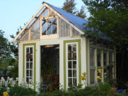Greenhouse built with old windows
