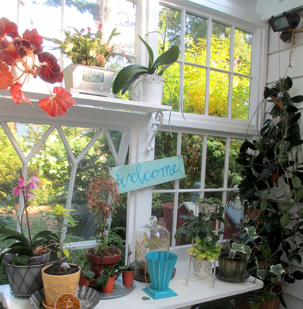 Greenhouse built from old windows