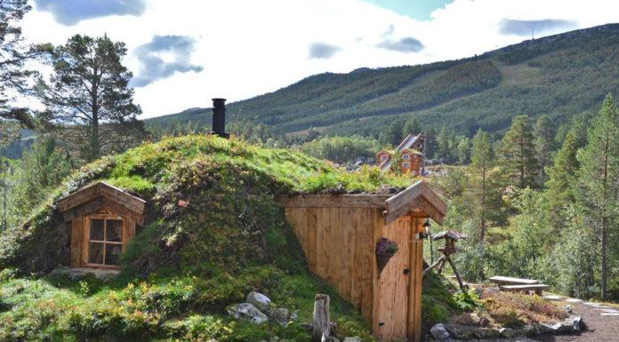Hobbit tiny cabin