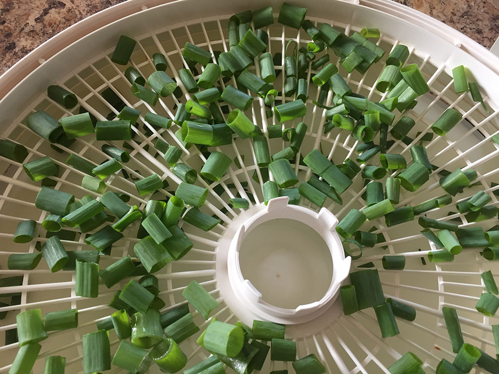 How to dry green onions
