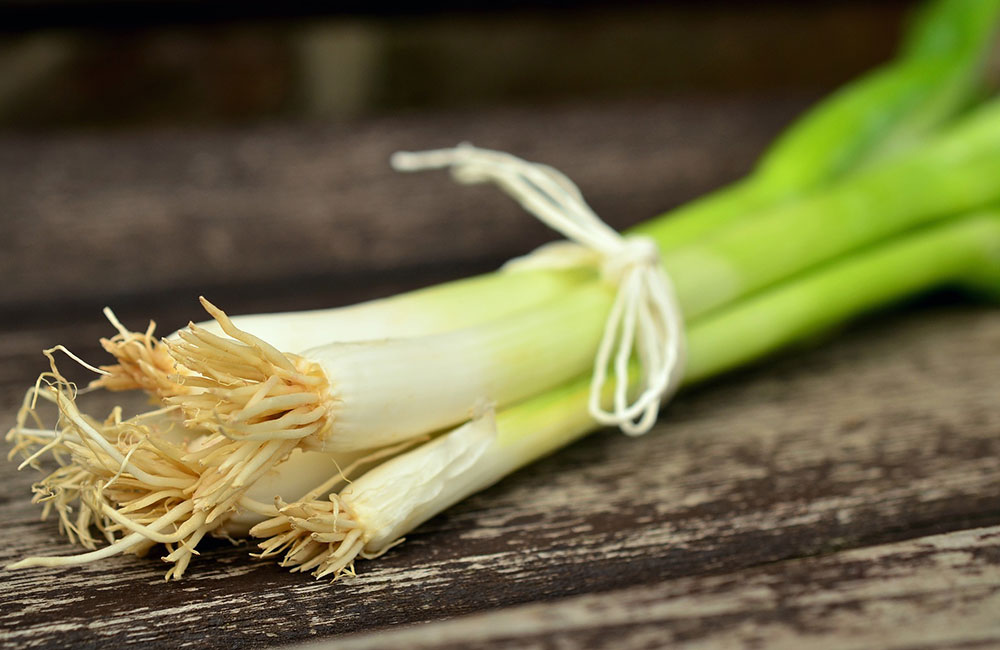 How to preserve green onions