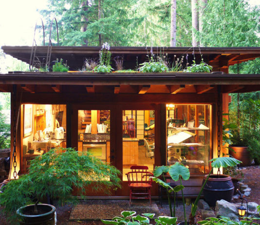 Cabin with living roof