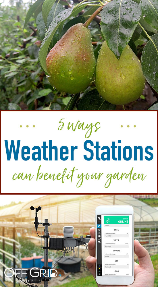Weather stations for your garden