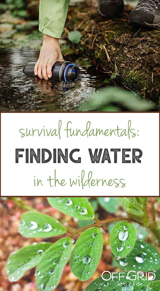 Finding water in the wilderness