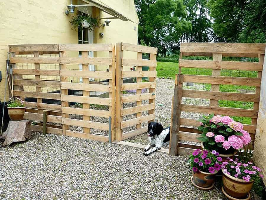 Pallet fence for dogs