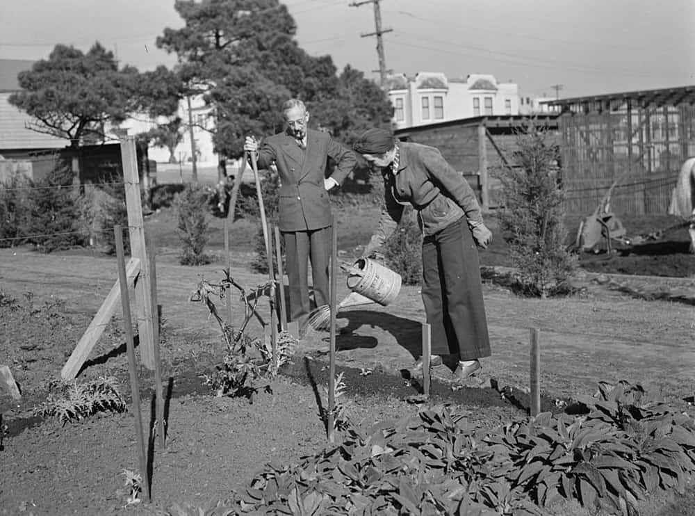 Watering a victory garden