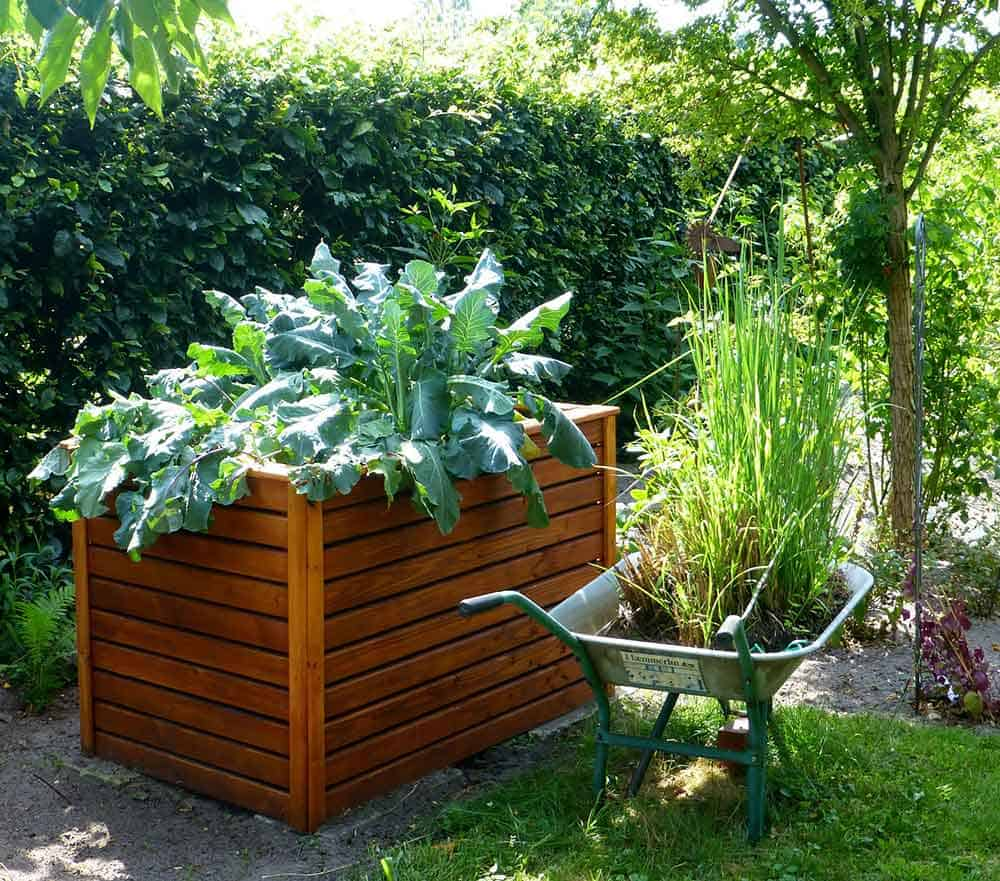Types of raised beds