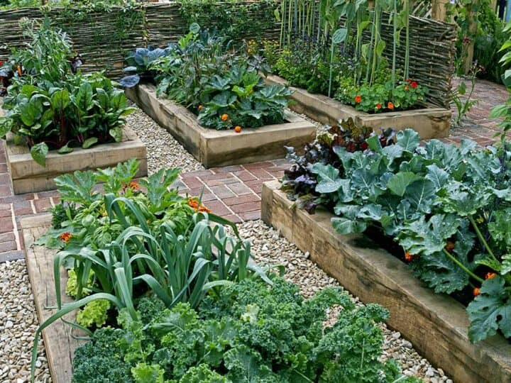 9 Great Reasons To Try Raised Bed Gardening