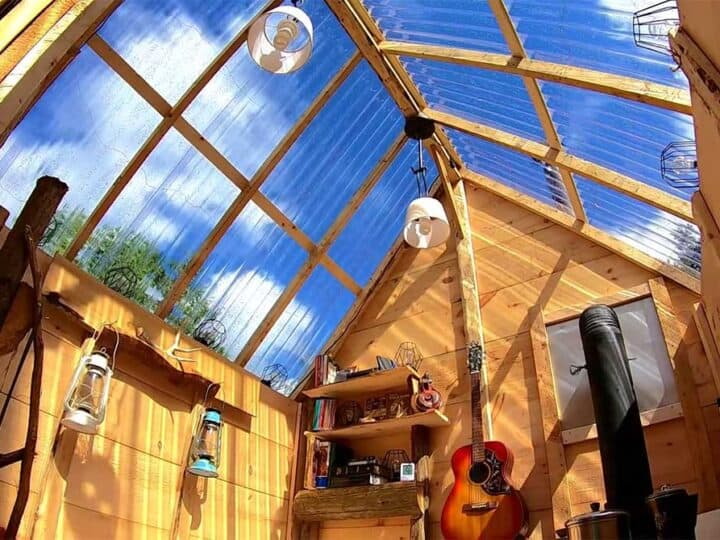 Cabin with greenhouse roof